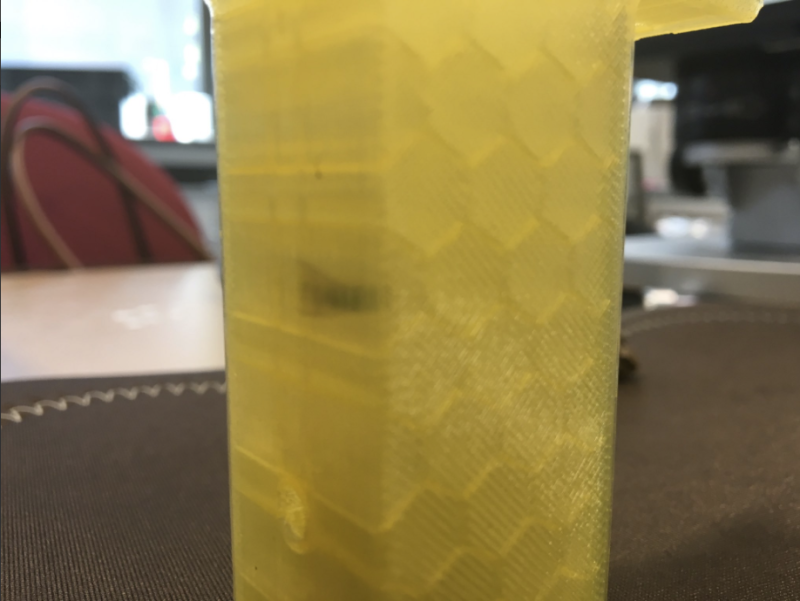 mosca impressa 3D fossíl impressora 3D